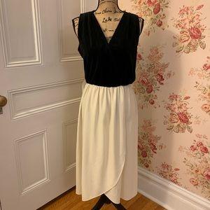 Vintage Black and White Velvet Dress